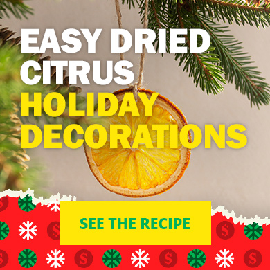 Easy dried citrus holiday decorations - See the recipe